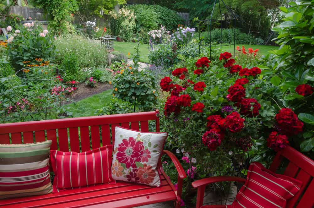 The matching red of the roses and the patio furniture add cohesiveness to this landscape design.