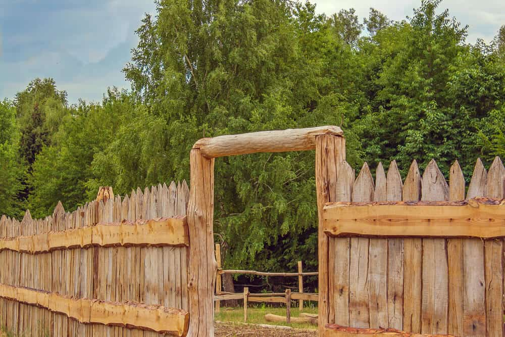 A rustic stockade fence used in a farm setting.